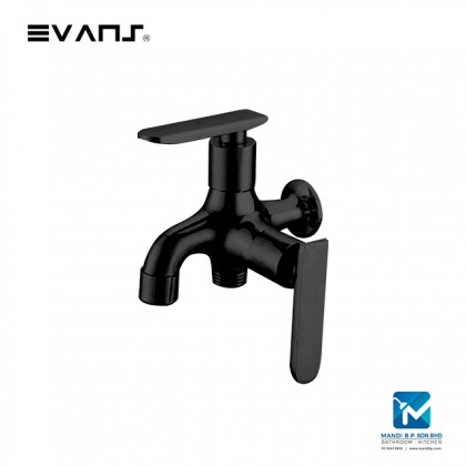 Evans Two way tap /  Brass Single Cold in wall faucet (Matt Black)